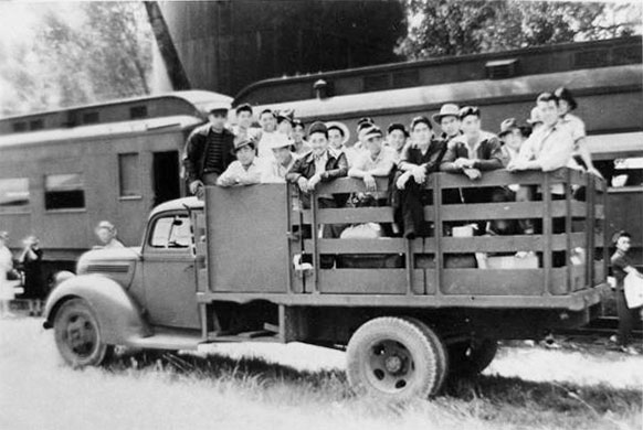 Men standing in the back of an army truck.