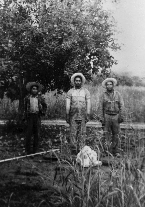 3 laborers in a field.